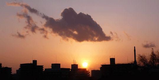 像金魚的雲