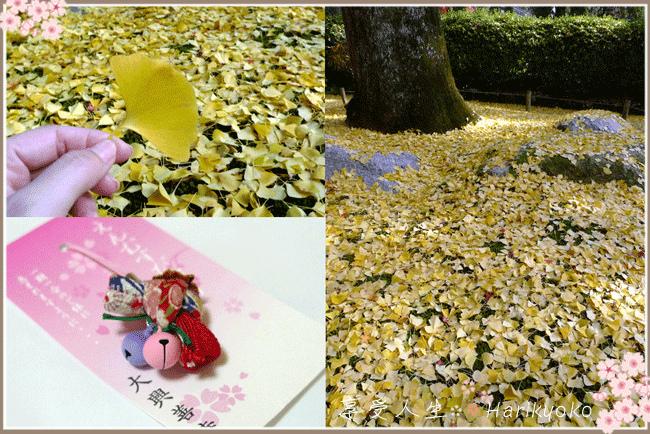 紅葉が美しい佐賀県大興善寺