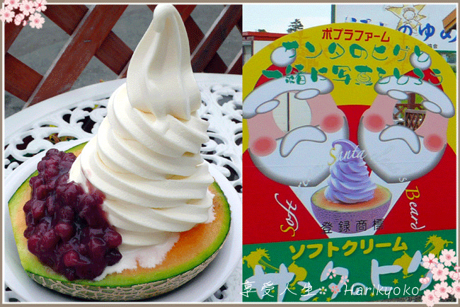 夏季非吃不可的美味日式刨冰